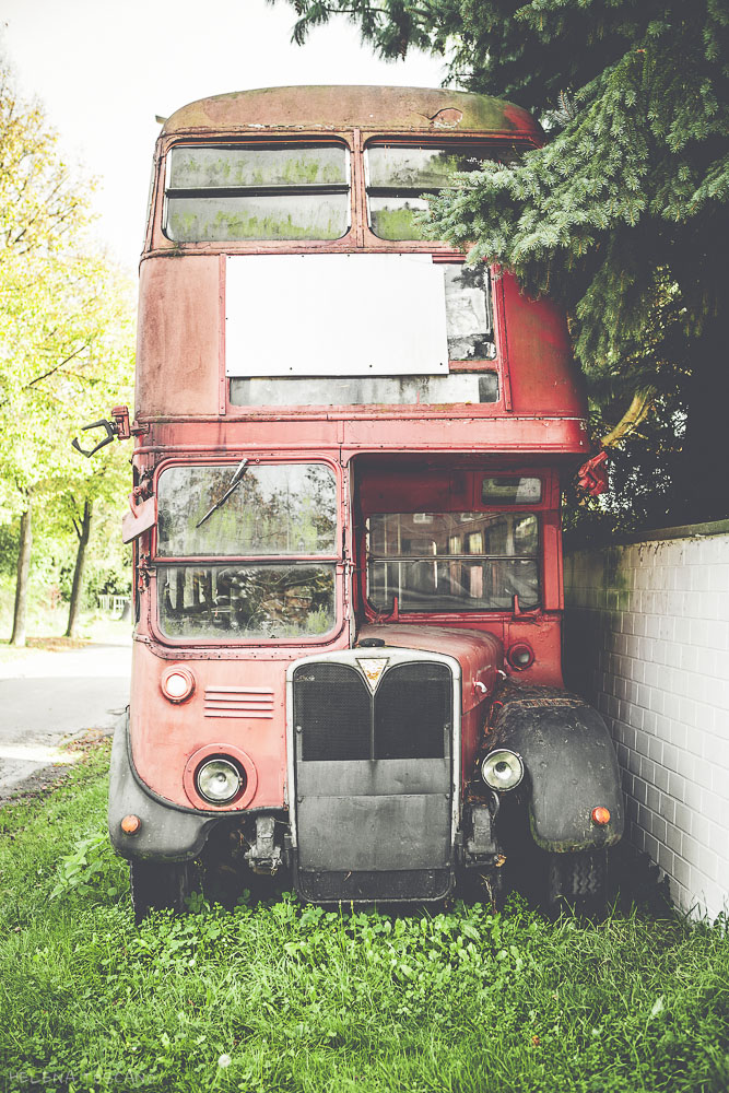 Red Bus (2/6)