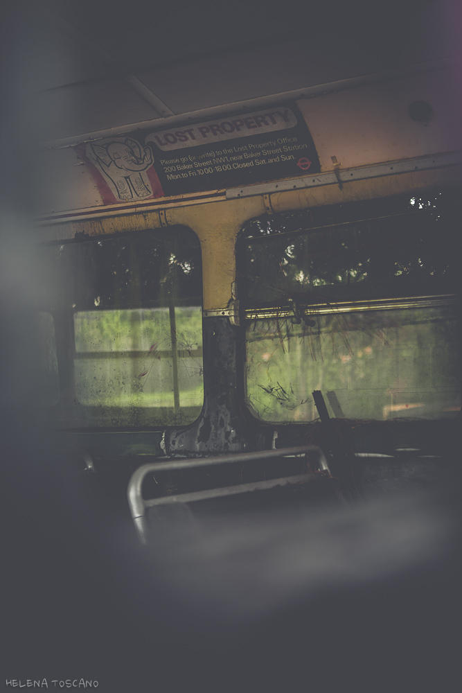 Red Bus (3/6)
