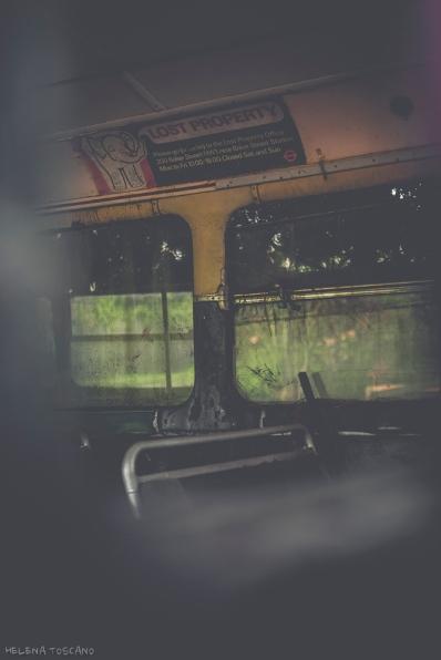 _MG_3401