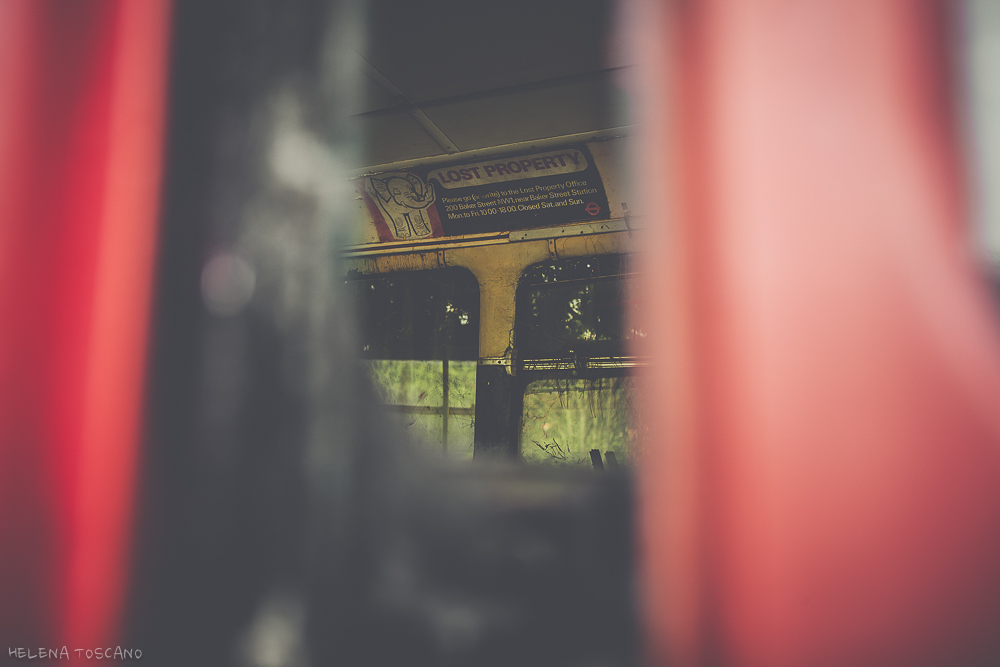 Red Bus (4/6)